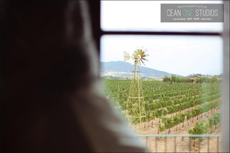 wedding vineyard | Cean One Photography| Southern California Wedding Photographer | Temecula Wine Country Wedding