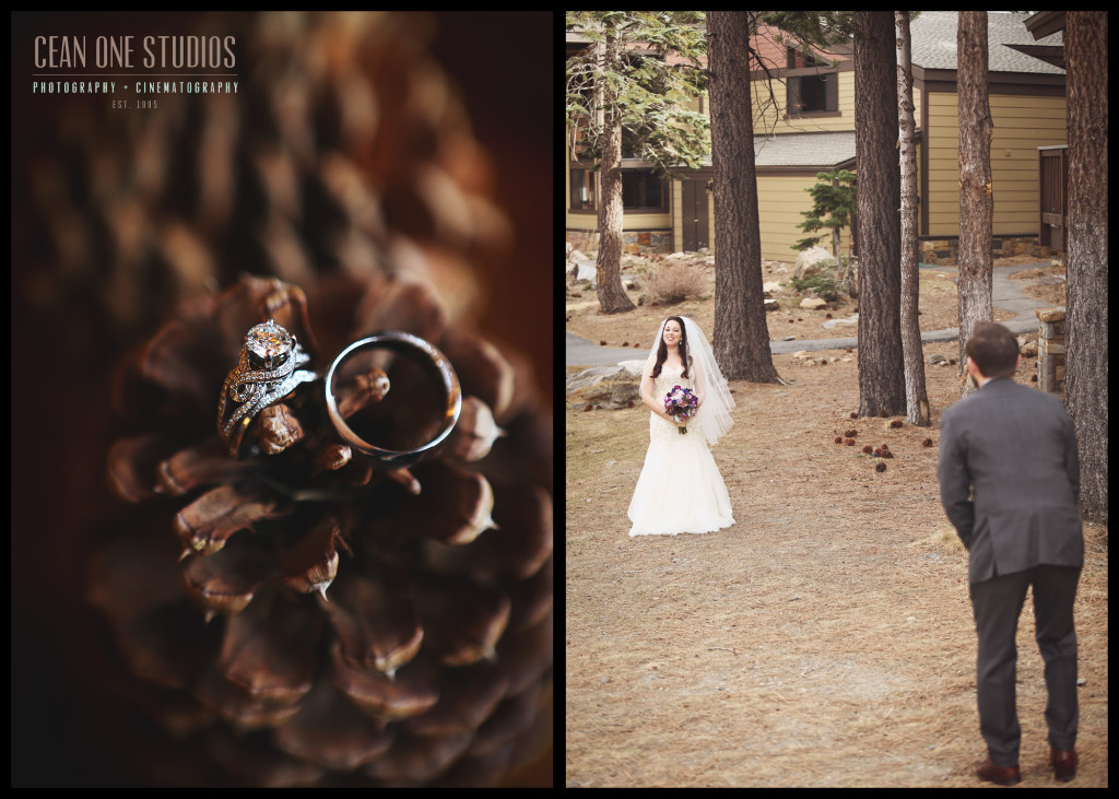 forrest wedding | destination weddings San Diego wedding photographer